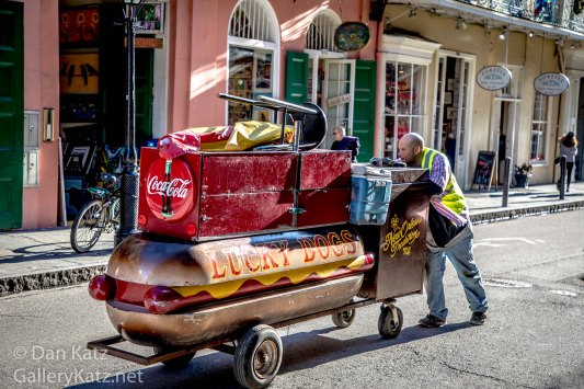 Lucky Dog New Orleans 2017