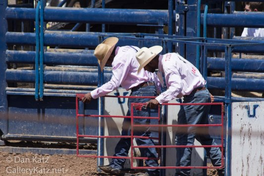 Rodeo Cowbows